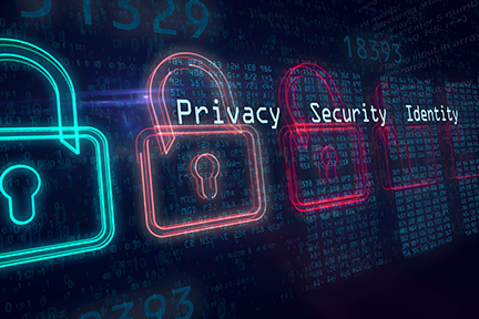 Privacy Security Identity data overlay