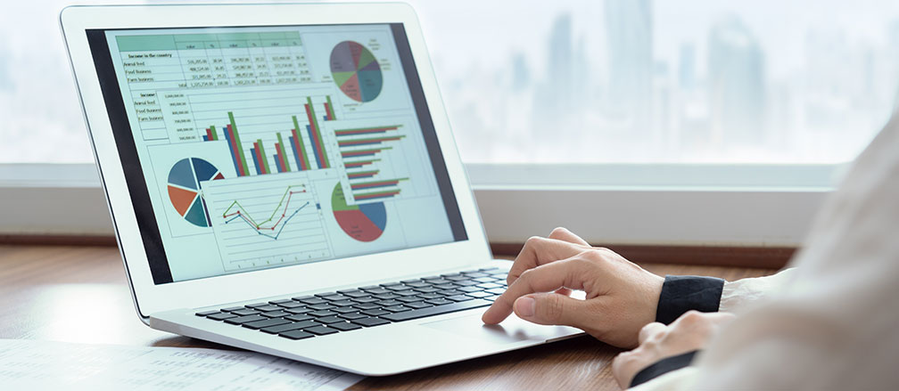accounting software displaying graphs on laptop